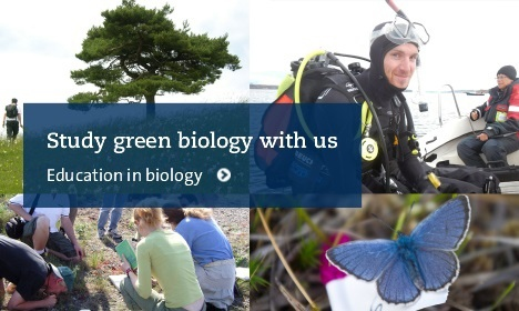 Study green biology with us