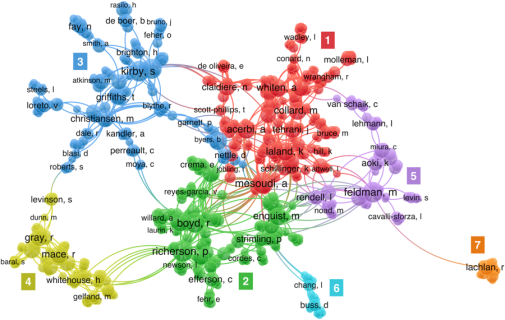 Co-authorship network in cultural evolution